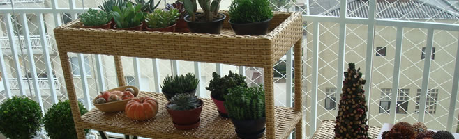 mesa-plantas